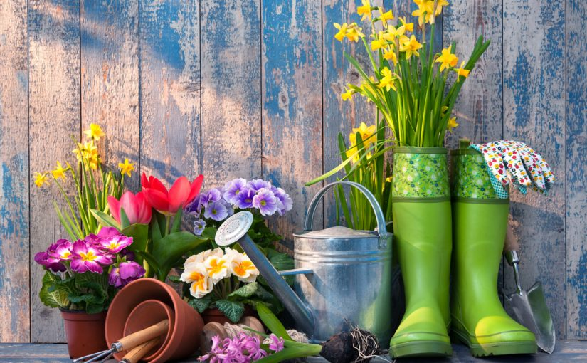 Top tips to prepare your garden for Summertime