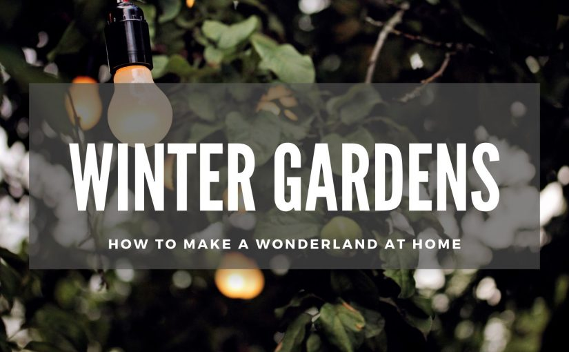 WINTER GARDENS: How to make a wonderland at home in FIFE (3 min read)